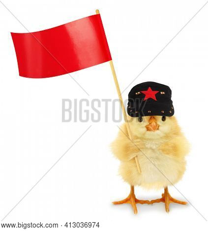 Cute cool chick communist with red flag funny conceptual image