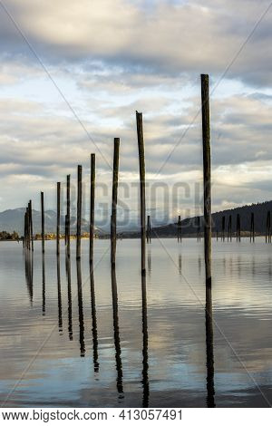 Wood Pilings In The Pend Oreille River In October In Cusick, Washington.