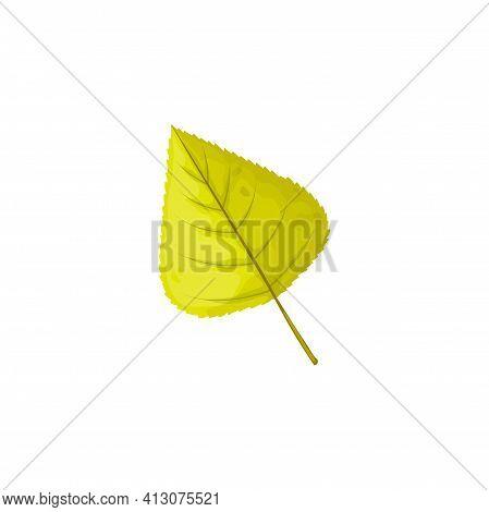 Autumn Birch Leaf Vector Icon, Foliage, Fallen Tree Leaf Of Greenish Color. Cartoon Natural Design E