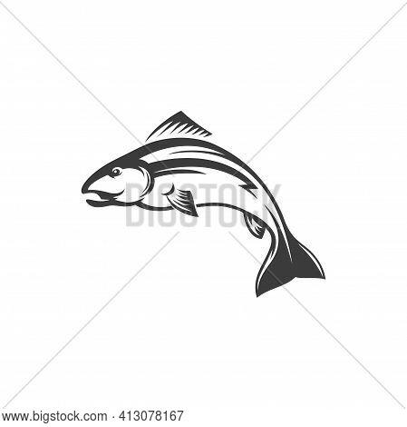 Fish Trout Sea Food, Fishery Mascot Isolated Monochrome Icon. Vector Underwater Animal, Salmon Fresh