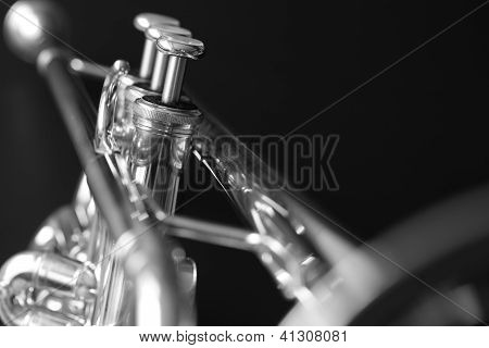 A trumpet isolated in black and white poster