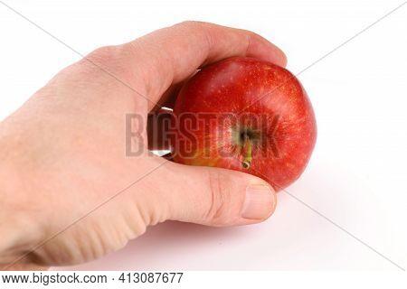 Apples Gala Grade Red In Human Hands