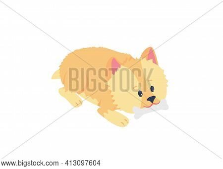 Terrier Puppy Chewing Bone Flat Color Vector Detailed Character