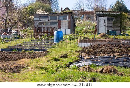 City gardening allotment