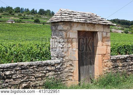 Chassagne-montrachet, France - July 5, 2020: Domaine Thenard Vineyard. Domaine Thenard Is A Grand Cr