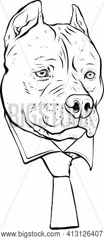 Draw In Black And White Of Pitbull Head With Necktie Vector Illustration Design