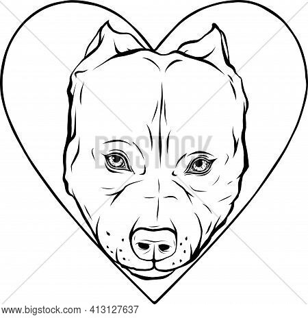 Draw In Black And White Of Pitbull Head Dog In Heart Vector Illustration