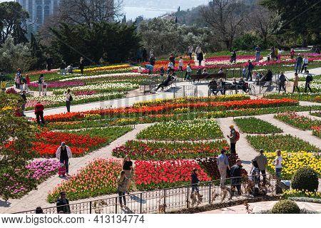 Yalta 06 April 2019 Nikitsky Botanical Garden Tulip Parade. People Walk Among The Colorful Flower Be
