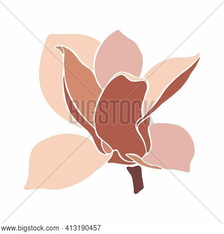 Magnolia Flower On White Background, Closeup. Style Floral Collage In Pastel Color Palette. Modern M