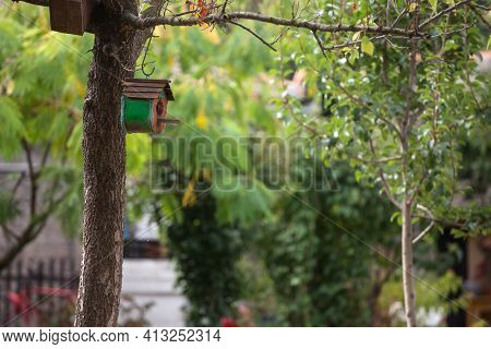 Handmade Diy Bird Wooden House Hanging On A Tree. This Wooden Nestling Box Is Used To Feed And Prote