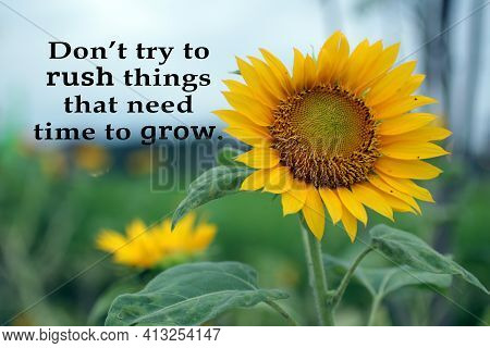 Inspirational Quote - Do Not Try To Push Things That Need Time To Grow.  Life Process Motivational W