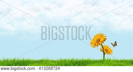Butterflies Smell Of Yellow Flowers On The Meadow, Behind A Cloudy Sky 3d Illustration