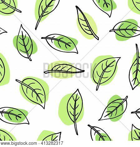 Leaves Seamless Pattern. Doodle Sketch Illustration. Floral Herb Design Elements. Botanical Forest T