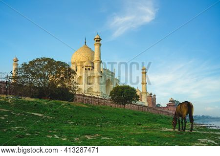 Taj Mahal, Unesco World Heritage Site, In Agra, India At Dusk
