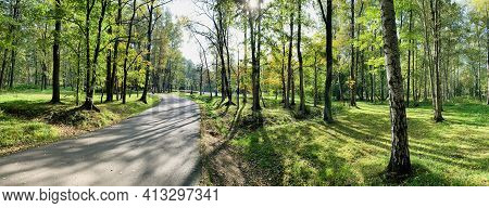 Panorama Of First Days Of Autumn In A Park, Long Shadows Of Trees, Blue Sky, Buds Of Trees, Trunks O