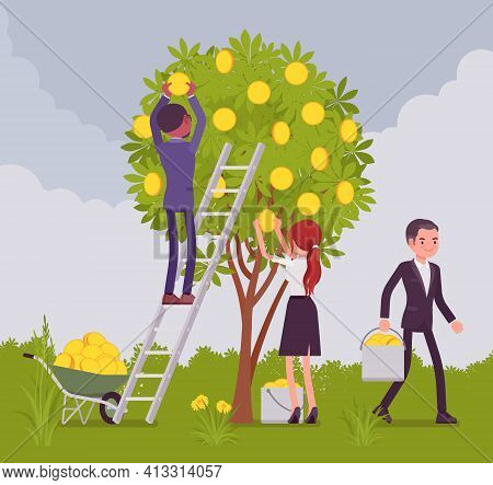 Return On Investment, Roi Dividends Gold Coin Tree Picking. Young Happy Business People Reaping The