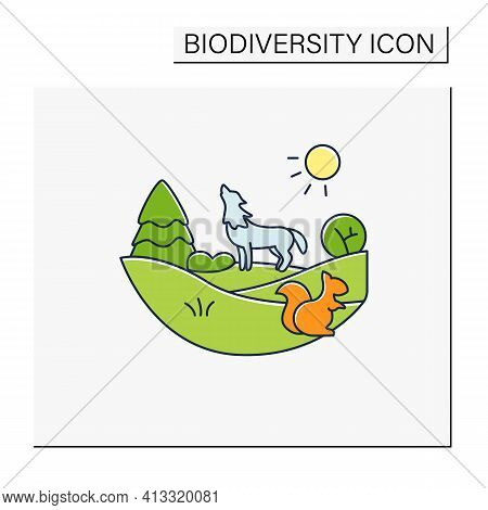 Temperate Forest Color Icon.forest Found Between Tropical, Boreal Regions, Located In Temperate Zone