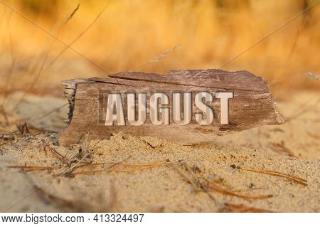 Time And Finance Concept. In The Sand Against The Background Of Yellow Grass There Is A Sign With Th