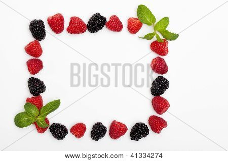 Berries and Spearmint Frame