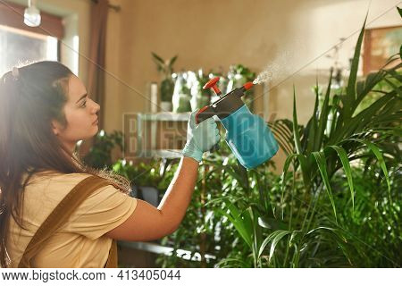 Young Girl Standing In A Home Garden And Sprinkles It With Water. Home Garden Care Concept. Girl In