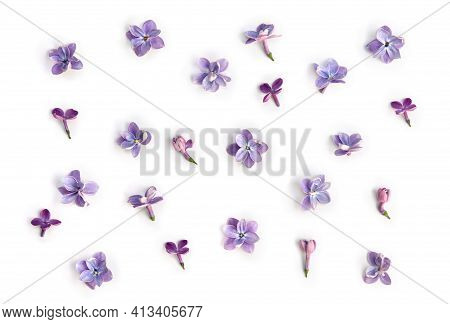 Violet Blue Flowers Lilac ( Syringa Vulgaris ) On A White Background. Spring Flowers. Top View, Flat