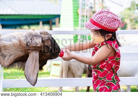 Girl Wearing Cloth Face Mask Goes To Zoo. Adorable Baby Feed The Goats With Plastic Bottle. A Four-l