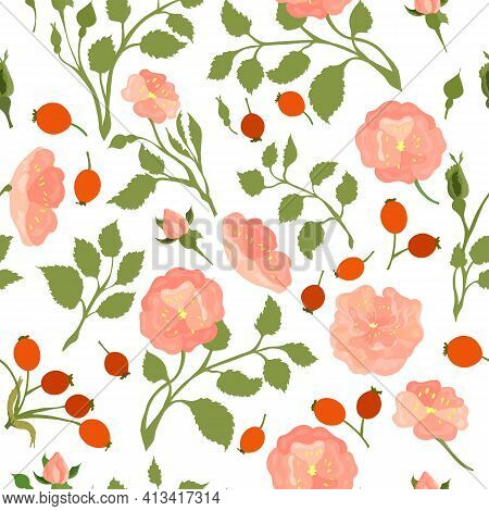 Seamless Pattern With Colored Dog-rose. Twigs, Flower Heads, Fruits And Leaves Placed Chaotically On