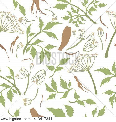 Seamless Pattern With Colored Angelica Sinensis Parts. Twigs, Umbels, Leaves And Roots Placed Chaoti