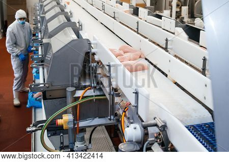 Meat Processing Equipment. Chicken Fillet Production Line . Meat Processing Plant. Factory For The P