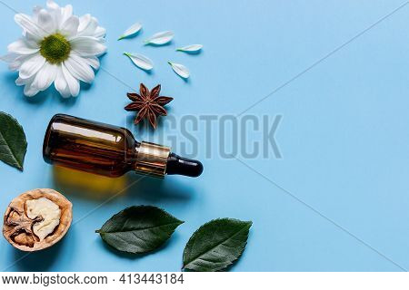 Perfume Bottle, Flowers And Walnut Natural Ingredients Of Natural Cosmetics With Place For Text