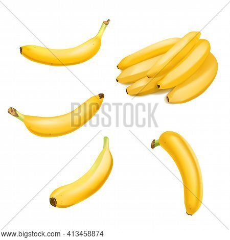 Set Of Realistic Banana And Banana Bunch Isolated On White Background. Tropical Fruit. Realistic Vec