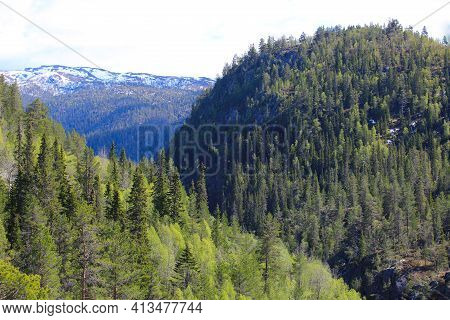 Valley And High Mountains With Fir Forest In Summer Near Rjukan, Hardangervidda, Norway