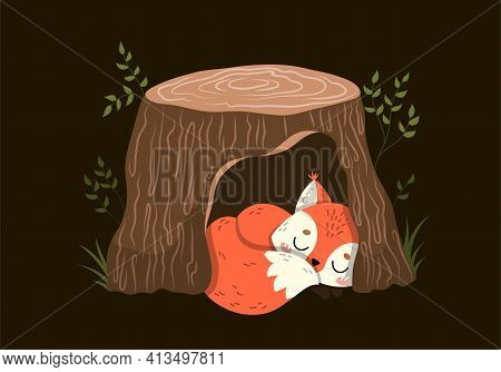 Cute Little Red Fox Sleeping In A Hollow Tree Trunk During The Darkness At Night, Colored Vector Ill