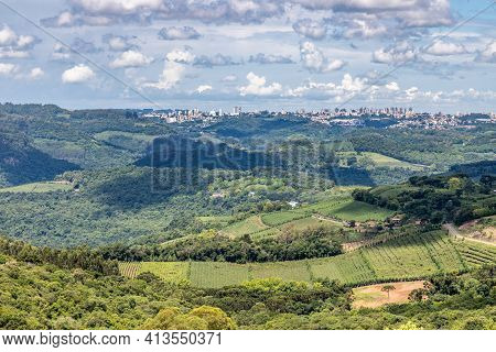 Vineyards And Forest With Bento Goncalves City In Background