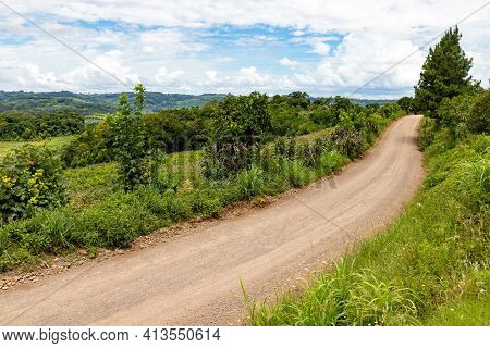 Dirty Road Around Farm Plantation And Forest, Bento Goncalves, Rio Grande Do Sul, Brazil