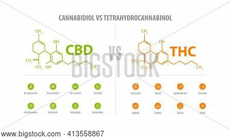 Cbd Vs Thc, List Of Differences With Icons And Chemical Formulas. White Banner With Comparison Cbd A