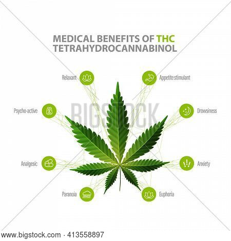 Tetrahydrocannabinol Benefits, White Information Poster With Icons Of Benefits And Green Leafs Of Ca