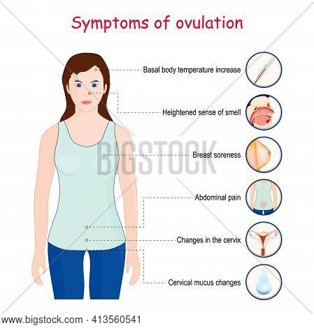Ovulation Symptoms. Vector Illustration With Woman And Common Symptoms Of Release Of Eggs From The O