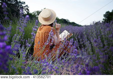 Provence - Girl Reading A Book In A Lavender Field