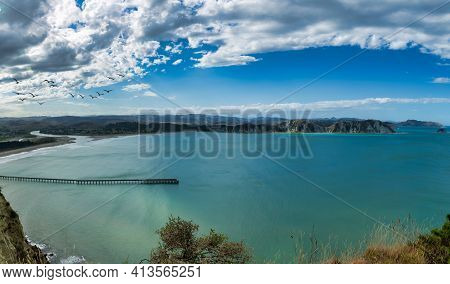 Scenic Views Of Tolaga Bay And Its Historic Wharf Photobombed  By A Group Sea Birds