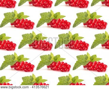 Red currants isolated over white background cutout.Creative layout, fruit seamless pattern.