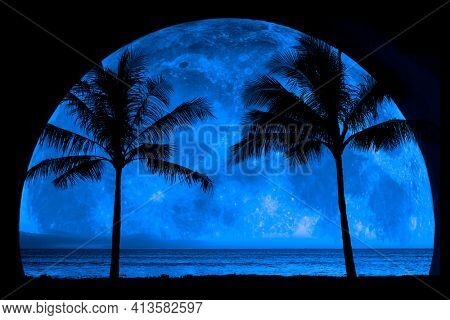 Tropical Palm Trees silhouette silhouetted by full moon midnight night time darkness