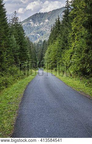 Forest Road In Janska Valley, Low Tatras Mountains, Slovak Republic. Hiking Theme. Seasonal Natural