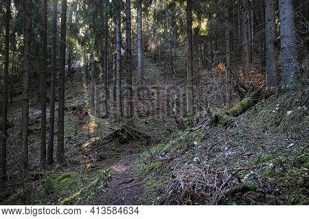 Sunny Morning Time In Low Tatras Mountains, Slovak Republic. Hiking Theme. Seasonal Natural Scene.