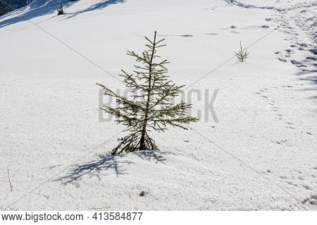 Detailed Photo Of Snowy Landscape, Poludnica Hill, Low Tatras Mountains, Slovak Republic. Hiking The