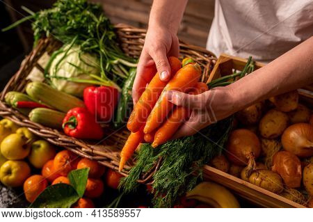 Organic Vegetables. Farmers Hands With Freshly Picked Carrots. Fresh Organic Carrots. Fruits And Veg