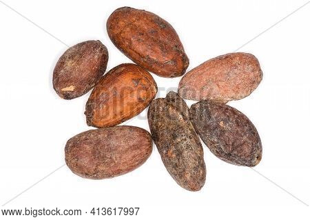 Several Dried Cocoa Beans On A White Background, Top View Close-up