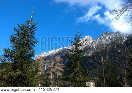 View To The Mountains From A Forest In Vaduz In Liechtenstein 17.2.2021