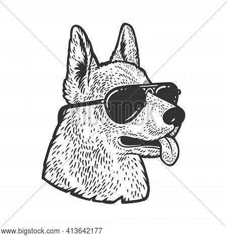 Shepherd Dog In Sunglasses Sketch Engraving Vector Illustration. T-shirt Apparel Print Design. Scrat