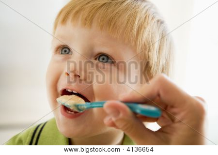 Mother Feeding Young Boy Baby Food